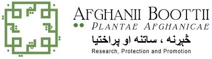 Afghaniibootti.org